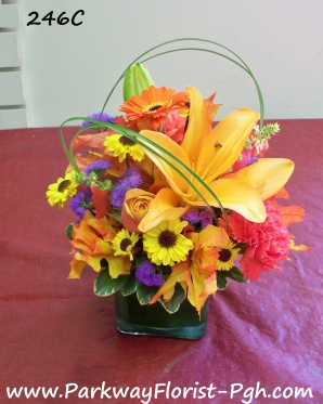 Center Pieces 246C