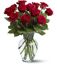 1 Dozen Red Roses Parkway Florist Pittsburgh_
