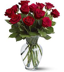 1 Dozen Red Roses Parkway Florist Pittsburgh_