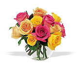 Hot Hot Roses Parkway Florist Pittsburgh