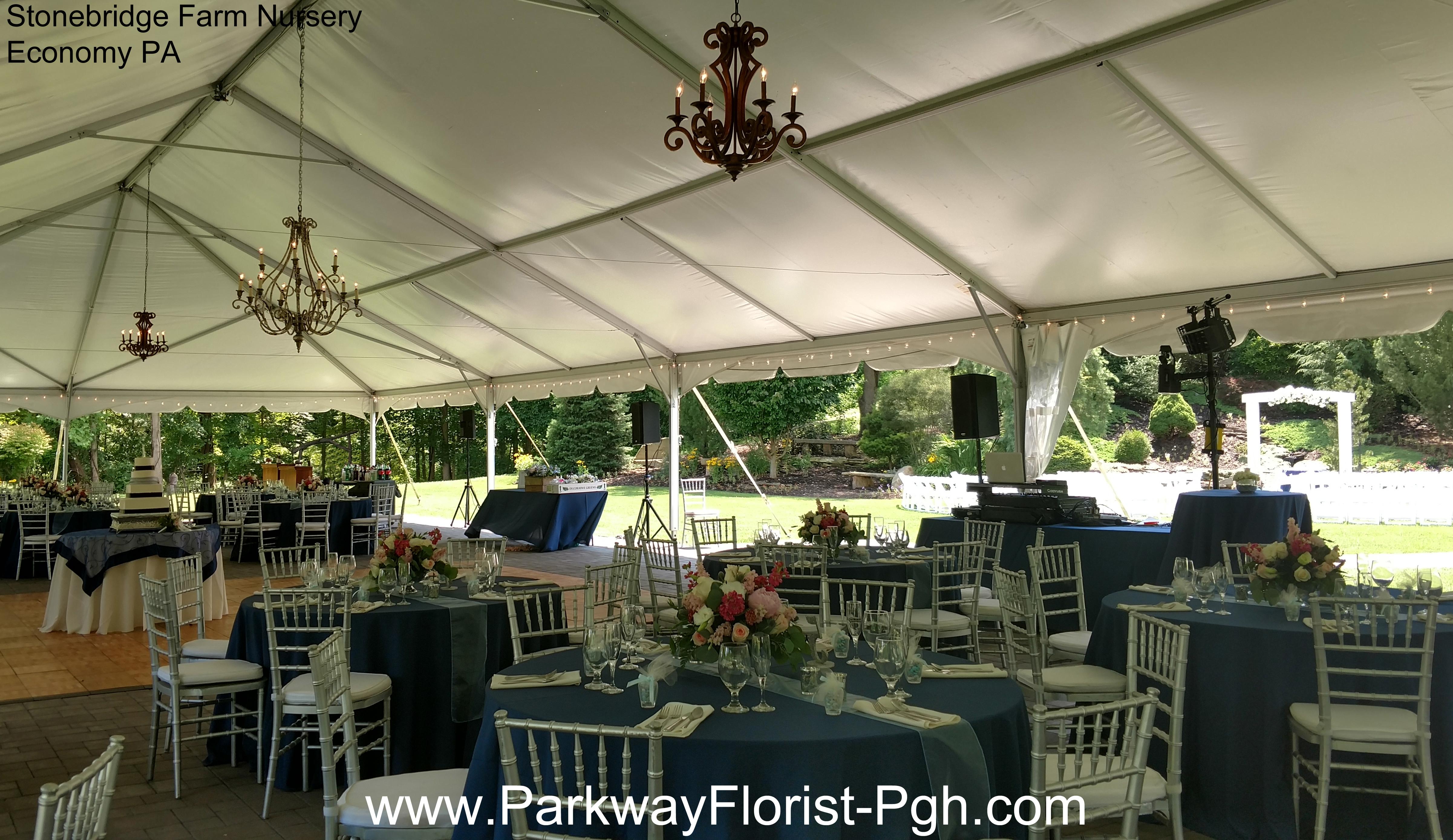Stonebridge Farm Nursery Economy PA Reception Tent