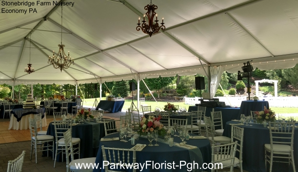 Stonebridge Farm Nursery Economy PA Reception Tent